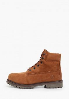 Ботинки, Timberland, цвет: коричневый. Артикул: TI007ABGHFH4. Мальчикам / Обувь / Ботинки