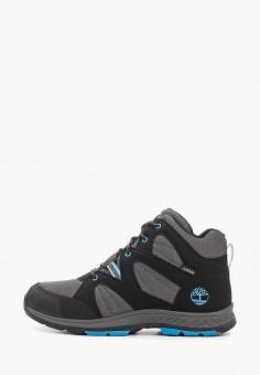 Ботинки трекинговые, Timberland, цвет: черный. Артикул: TI007ABGHFH5. Мальчикам / Обувь / Ботинки