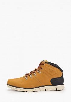 Ботинки, Timberland, цвет: коричневый. Артикул: TI007AMGHCK2.
