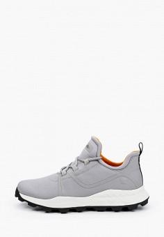 Кроссовки, Timberland, цвет: серый. Артикул: TI007AMIRQR1.