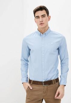Рубашка, Tom Tailor, цвет: голубой. Артикул: TO172EMHQFV8. Одежда