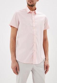 Рубашка, United Colors of Benetton, цвет: розовый. Артикул: UN012EMDXFQ2.