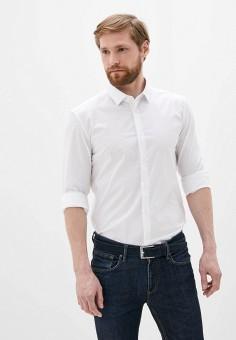 Рубашка, Versace Collection, цвет: белый. Артикул: VE036EMJCUY1. Одежда / Рубашки / Рубашки с длинным рукавом