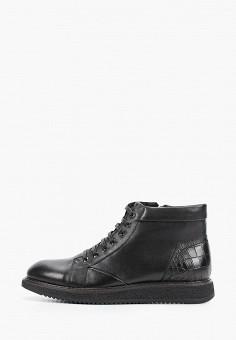 Ботинки, Vera Victoria Vito, цвет: черный. Артикул: VE176AMFNZE0. Обувь / Ботинки / Высокие ботинки
