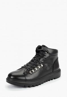 Ботинки, Vitacci, цвет: черный. Артикул: VI060AMCFVB3.