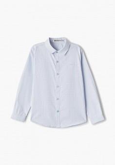 Рубашка, Vitacci, цвет: голубой. Артикул: VI060EBFYKU4.