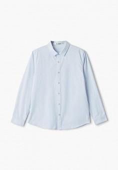 Рубашка, Vitacci, цвет: голубой. Артикул: VI060EBFYKU7.