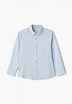Рубашка, Vitacci, цвет: голубой. Артикул: VI060EBFYKV2.