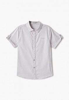 Рубашка, Vitacci, цвет: серый. Артикул: VI060EBFYKV5.