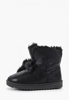 Полусапоги, Vivian Royal, цвет: черный. Артикул: VI809AWHHTD2. Обувь / Сапоги