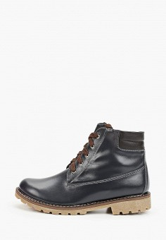 Ботинки, Winzor, цвет: синий. Артикул: WI011AWGOAL6. Обувь / Ботинки / Высокие ботинки