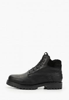 Ботинки, Wrangler, цвет: черный. Артикул: WR224AMGSIJ3. Обувь / Ботинки / Низкие ботинки