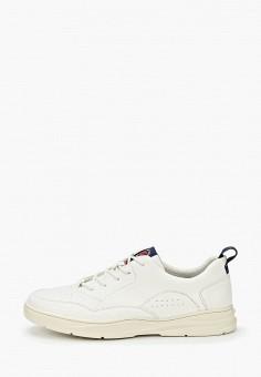 Кроссовки, Zenden Active, цвет: белый. Артикул: ZE008AMIPMP8. Обувь / Кроссовки и кеды / Кроссовки / Низкие кроссовки