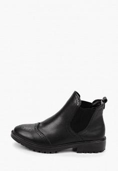 Ботинки, Zenden Collection, цвет: черный. Артикул: ZE012AWHIJU1. Обувь / Ботинки / Челси
