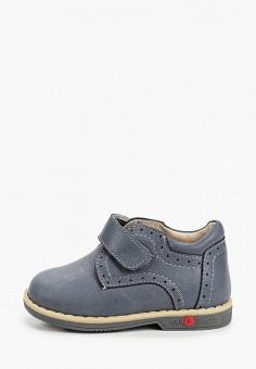 Ботинки, ZeBra, цвет: серый. Артикул: ZE218ABIFGI6. Мальчикам / Обувь / Ботинки