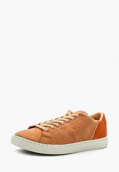 Купить Кеды DC Shoes - цвет: коричневый, Вьетнам, DC329AMAKAL7