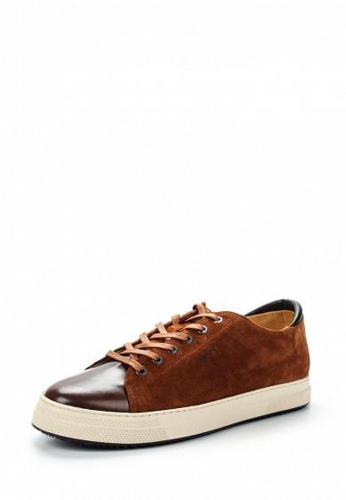Купить Кеды Gant - цвет: коричневый, Португалия, GA121AMVOB45