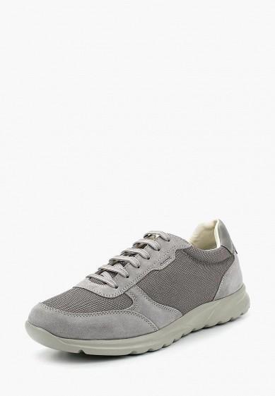 Купить Кроссовки Geox - цвет: серый, Камбоджа, GE347AMADFQ4