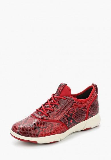 Купить Кроссовки Geox - цвет: красный, Китай, GE347AWADCQ6