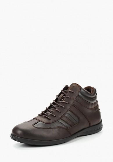 Купить Кроссовки Pierre Cardin - цвет: коричневый, Китай, MP002XM23SSN