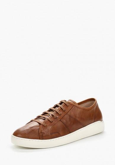 Купить Кеды Nobrand - цвет: коричневый, Португалия, NO024AMBDZG2
