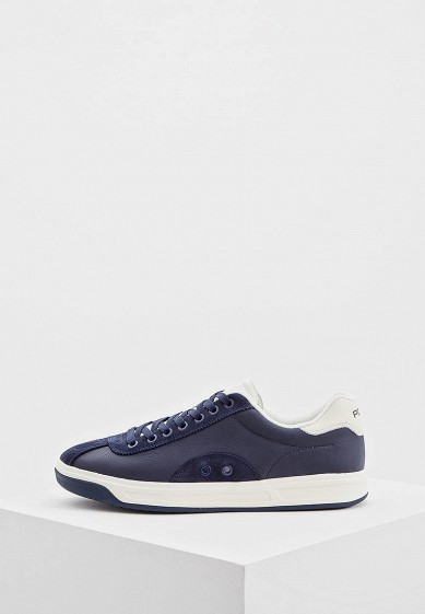 Купить Кеды Polo Ralph Lauren - цвет: синий, Китай, PO006AMBXEC9