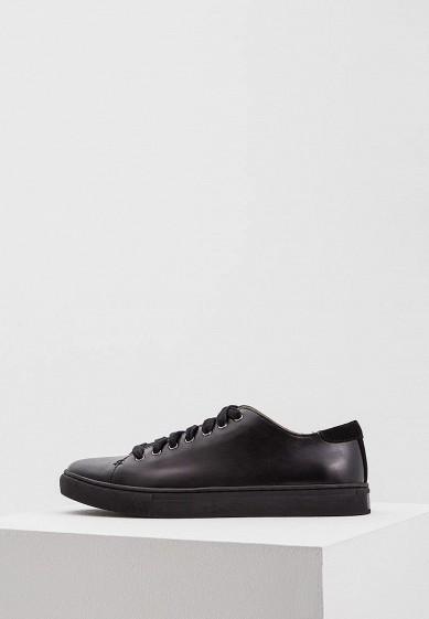 Купить Кеды Polo Ralph Lauren - цвет: черный, Китай, PO006AMWET47