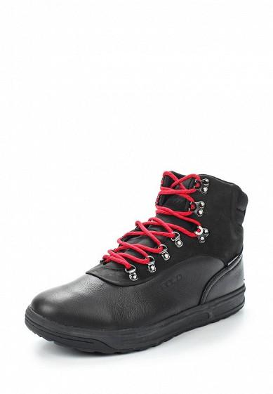 Купить Кеды Polo Ralph Lauren - цвет: черный, Китай, PO006AMWET57