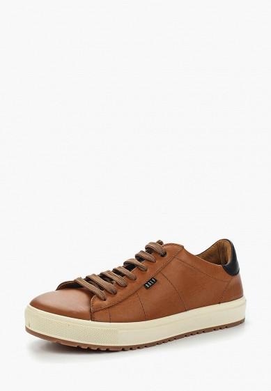 Купить Кеды Ralf Ringer - цвет: коричневый, Россия, RA084AMAISF8