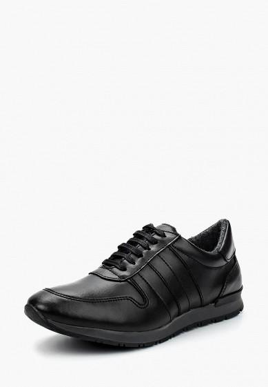 Купить Кроссовки Storm - цвет: черный, Португалия, ST891AMLHJ02