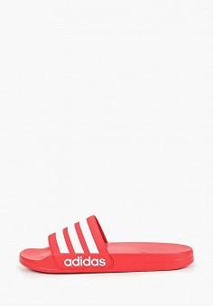 Сланцы, adidas, цвет  красный. Артикул  AD002AMEEFI8. Спорт   Все спортивные 2e5a6a7cfe9
