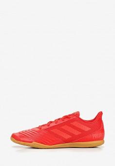 097c244a Бутсы зальные, adidas, цвет: красный. Артикул: AD002AMEEFT3. Спорт / Футбол