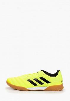 2ba82198 Бутсы зальные, adidas, цвет: желтый. Артикул: AD002AMFKBJ9. Обувь /  Кроссовки