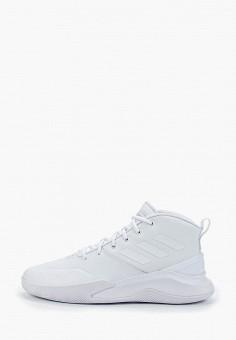 46092bc8 Кроссовки, adidas, цвет: белый. Артикул: AD002AMFKBO9. Спорт / Баскетбол /