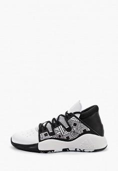 3f48f13e Кроссовки, adidas, цвет: белый. Артикул: AD002AMFKBR5. Спорт / Баскетбол /