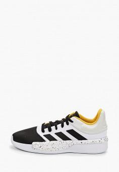 5f04ca7f Кроссовки, adidas, цвет: черный. Артикул: AD002AMFKTI9. Спорт / Баскетбол /