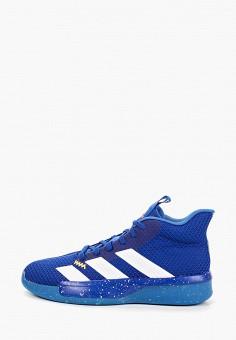 b141cd54 Кроссовки, adidas, цвет: синий. Артикул: AD002AMFKTJ7. Спорт / Баскетбол /
