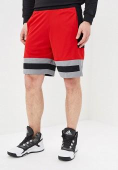 133d6242 Шорты спортивные, adidas, цвет: красный. Артикул: AD002EMEEIH8. Спорт /  Баскетбол