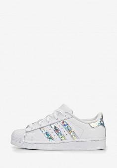 1395fa70501a Кеды, adidas Originals, цвет  белый. Артикул  AD093AGEEFD0. adidas Originals