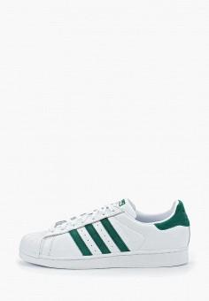 eeb42f8f873d Мужские низкие кеды adidas Originals — купить в интернет-магазине Ламода