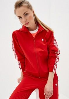 c8384bbb Олимпийка, adidas Originals, цвет: красный. Артикул: AD093EWFKXI1. Спорт /  Все