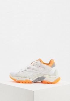9cdf8823 Кроссовки, Ash, цвет: белый. Артикул: AS069AWDZKX8. Обувь