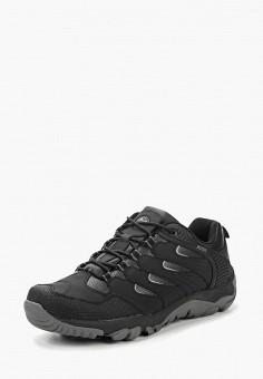 ea9128bff Ботинки трекинговые, Ascot, цвет: черный. Артикул: AS821AMCJTV6. Обувь /  Ботинки