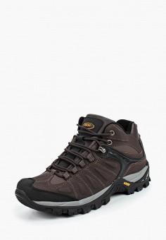 4aa69ace75da Ботинки трекинговые, Ascot, цвет  коричневый. Артикул  AS821AMCJTY7. Ascot