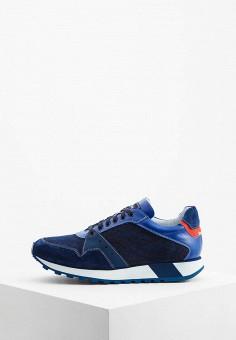 5227359c Мужская обувь, одежда и аксессуары Baldinini — купить в интернет ...
