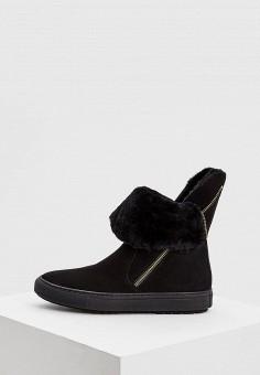 cfed8a55c Полусапоги, Baldinini, цвет: черный. Артикул: BA097AWCEGP8. Обувь / Сапоги /