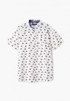 4f5b3207f6b Купить одежду