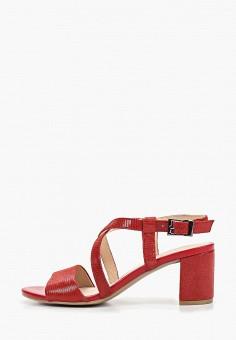 e75f83c5d Босоножки, Caprice, цвет: красный. Артикул: CA107AWDTOZ2. Обувь / Босоножки