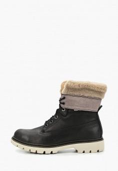ce52d427d Ботинки, Caterpillar, цвет: черный. Артикул: CA213AWCPOD0. Обувь