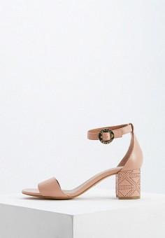 a68a4eec1bdc Босоножки, Emporio Armani, цвет: розовый. Артикул: EM598AWDPUI0. Обувь